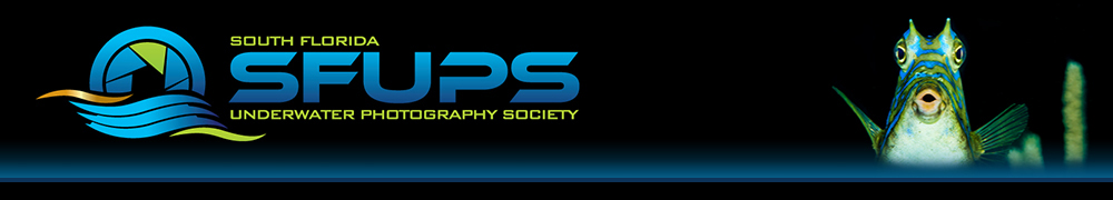 South Florida Underwater Photography Society